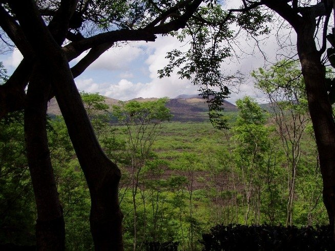 Vista desde la Terraza al Volcan